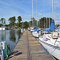 Sailboats On The Boardwalk by Barb Dalton