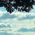 Day Dreaming With Clouds by Jennifer E Doll