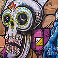 Day Of The Dead Mural by Terry Rowe