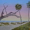 Daybreak At Edisto by Joel Deutsch