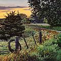 Daybreak Southwest Corner Fenceline by Bruce Morrison