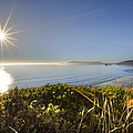 Daylight Star by Debra and Dave Vanderlaan