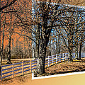 Fence - Trees - Landscape - Daylight Till Dusk by Barry Jones