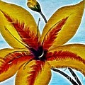 Daylily Expressive  Brushstrokes by Barbara Griffin
