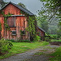 Days Gone By by Bill Wakeley
