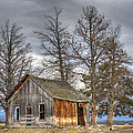 Days Gone By by Loree Johnson
