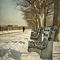 Days Of Cold Chills by Evelina Kremsdorf