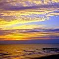 Daytona Beach by Karen Wiles