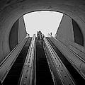 Dc Metro by Rita Mueller