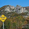 Dead End by Timothy Flanigan