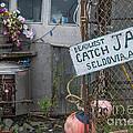 Deadliest Catch Jail by Jim Cook
