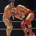Dean Ho Vs Don Muraco In Old School Wrestling From The Cow Palace by Jim Fitzpatrick