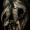 Death Mask by Bill Zinck