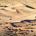 Death Valley by David Davis