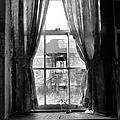 Deaths Window by Art Dingo