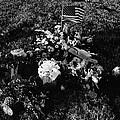 Debbie C's Grave American Flag Evergreen Cemetery Tucson Arizona 1991 by David Lee Guss