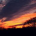 December Sunset by Dan McCafferty