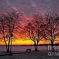 December Sunset by Terri Gostola