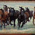 Deco Horses by JQ Licensing