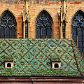 Decorative Roof by Dave Mills