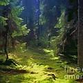 Deep Forest by Lutz Baar