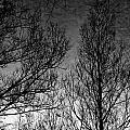 Deep Sky by Doug Gibbons