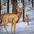 Deer by B Kathleen Fannin