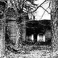 Defunct Farm by Michael Krek