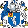 Dehany Coat Of Arms Irish by Heraldry