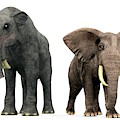Deinotherium And Elephant Compared by Walter Myers