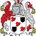 Delahay Coat Of Arms Irish by Heraldry