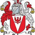 Delap Coat Of Arms Irish by Heraldry
