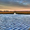 Delaware- Assawoman Bay by Tim Buisman