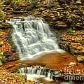 Delaware Falls - Ricketts Glen by Nick Zelinsky