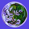 Delicate Flowers Orb by Brent Dolliver