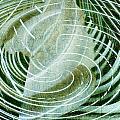 Delightful Swirl by Davina Washington
