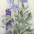 Delphiniums by James Valentine Jelley
