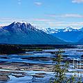 Denali Mountain Range by Jennifer White