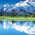 Denali National Park Ak Usa by Panoramic Images