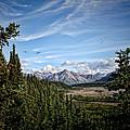 Denali Valley by Heather Applegate