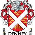 Denney Coat Of Arms Kerry Ireland by Heraldry
