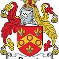 Dennis Coat Of Arms Irish by Heraldry