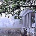 Dense Fog Plymouth Rock Canopy by Janice Drew