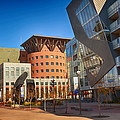 Denver Art Museum Courtyard by Angelina Vick