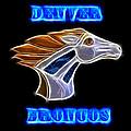 Denver Broncos 2 by Shane Bechler