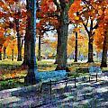 Denver Park 1 by Angelina Vick