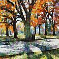 Denver Park 3 by Angelina Vick