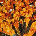 Denver Park 7 by Angelina Vick