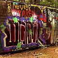 Derailed Along The Cheakamus by Adam Jewell