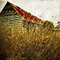 Derelict Barn by Innershadows Photography